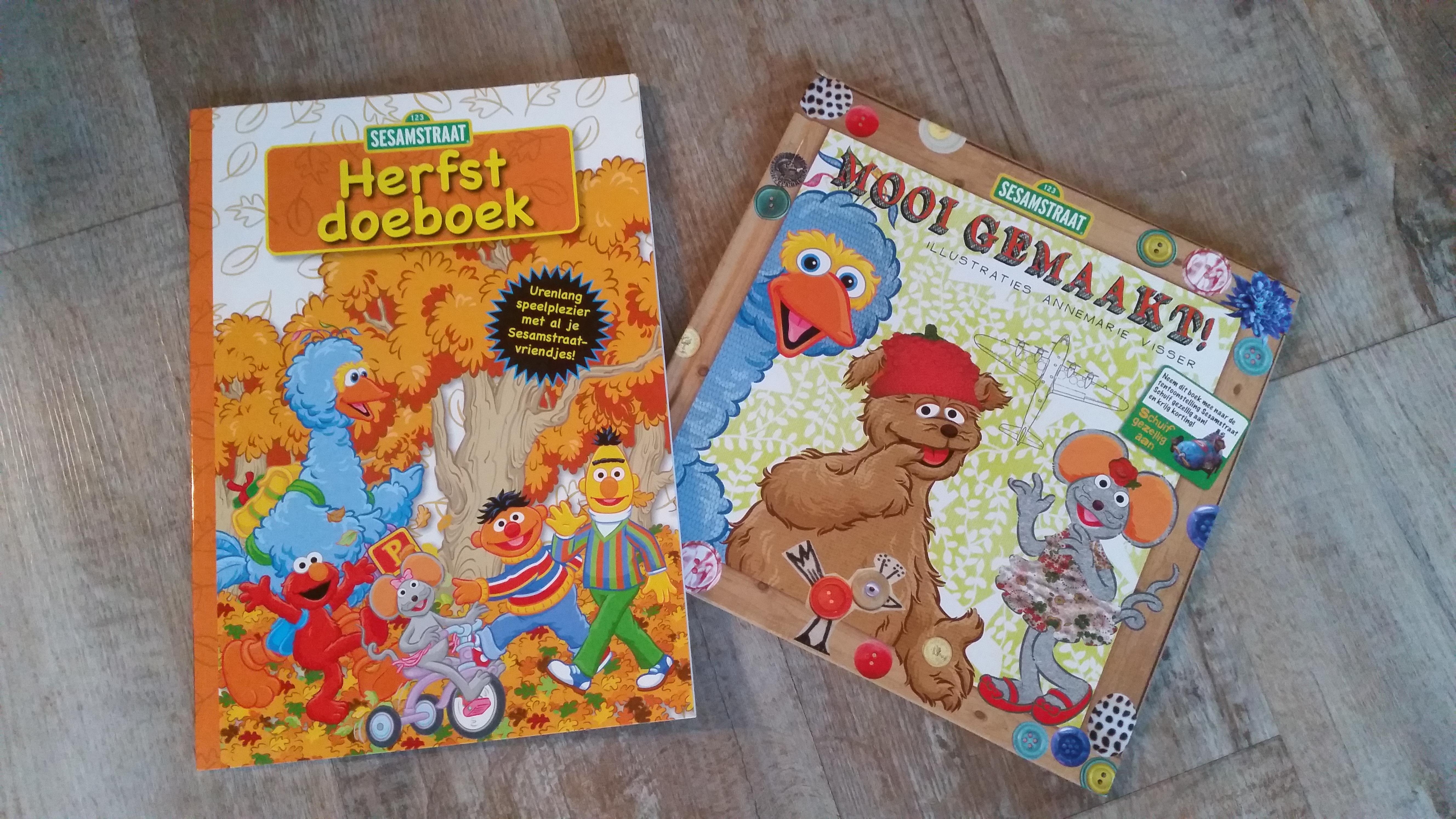 c89396be45a sesamstraat Herfstboek | JouwVeilingen.nl webshop